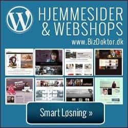 Wordpress Hjemmeside, webshop, seo optimeret fra BizDoktor.dk