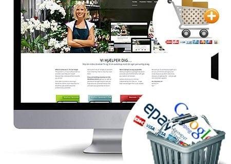 Wordpress Webshop services