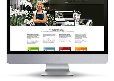 Wordpress hjemmeside pakker