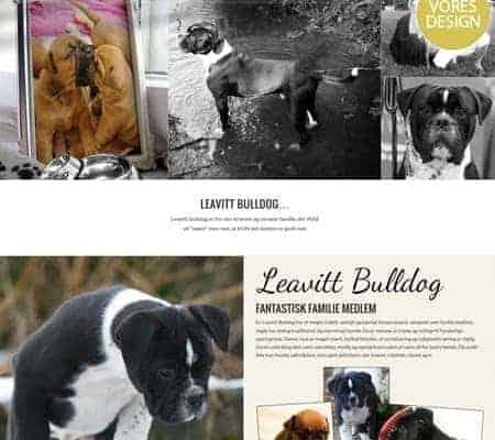 Ny wordpress hjemmeside til LeavittBulldog.dk