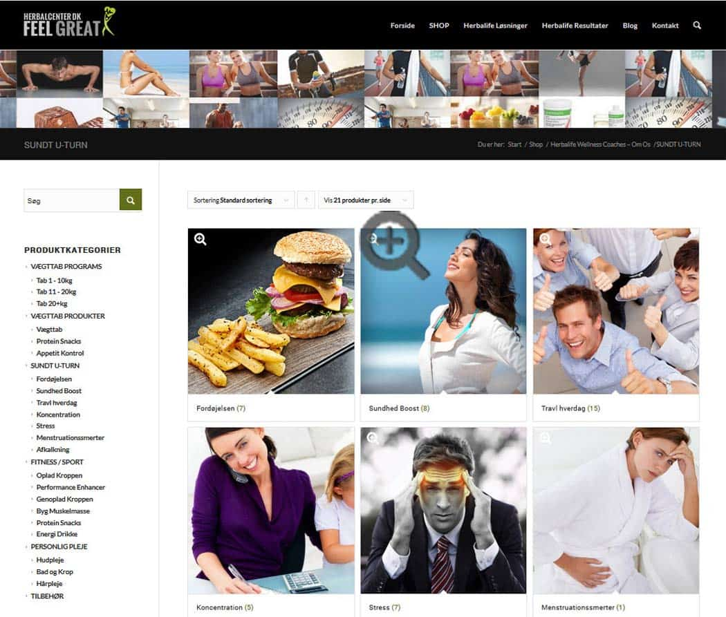 Menu tip - Wordpress Hjemmeside i 2015