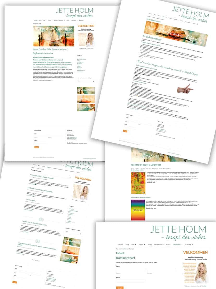 Forrige hjemmeside screenshots fra jetteholm.dk