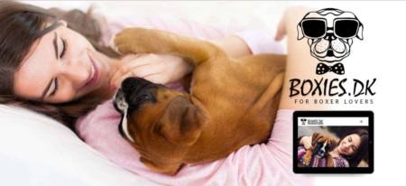 Opdrætter hjemmeside til Boxer hunde