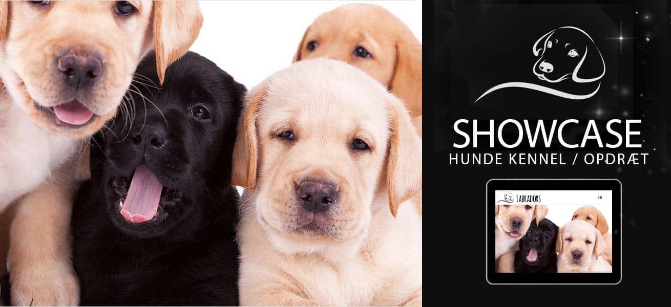 Wordpress hjemmeside til hunde kennel opdræt