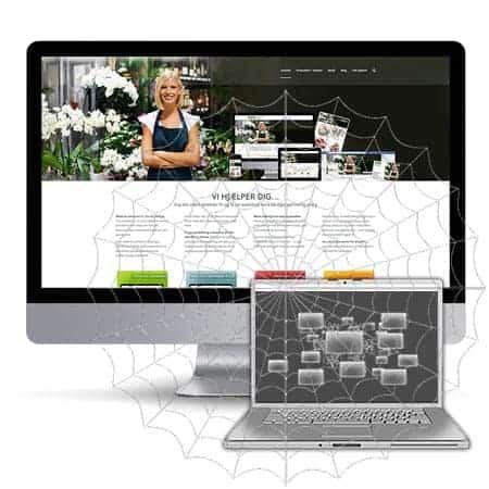 Hjemmeside og Webshop list building services fra BizDoktor