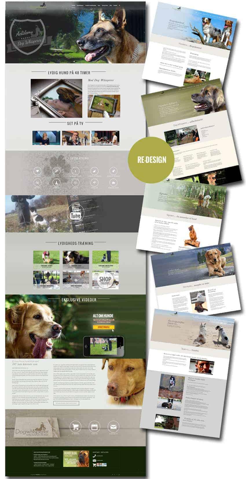 DogWhisperer.dk - Enfold responsive wordpress hjemmeside og woocommerce