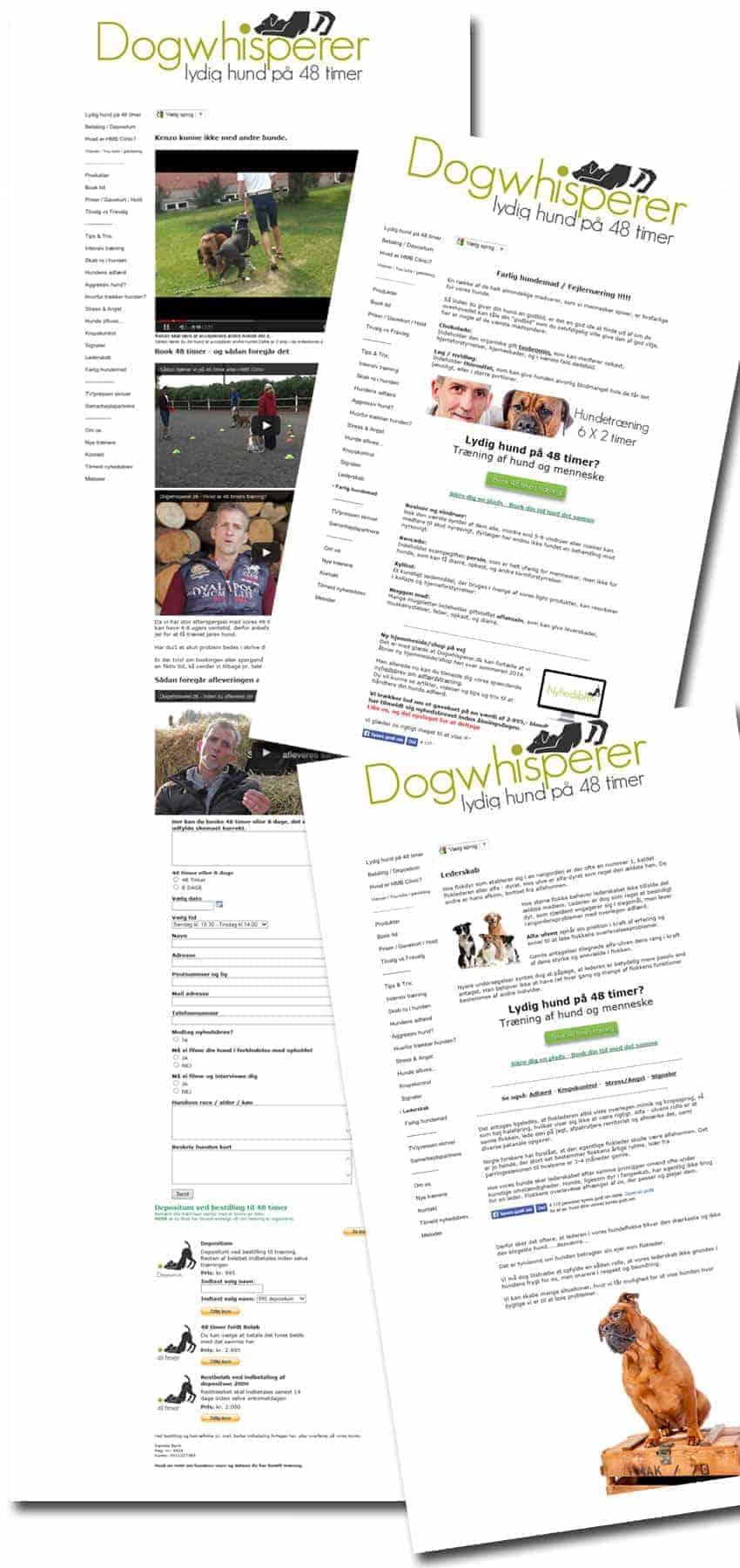 DogWhisperer.dk Wordpress hjemmeside før