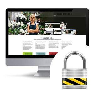 Sikkerhedspakke - Hjemmeside