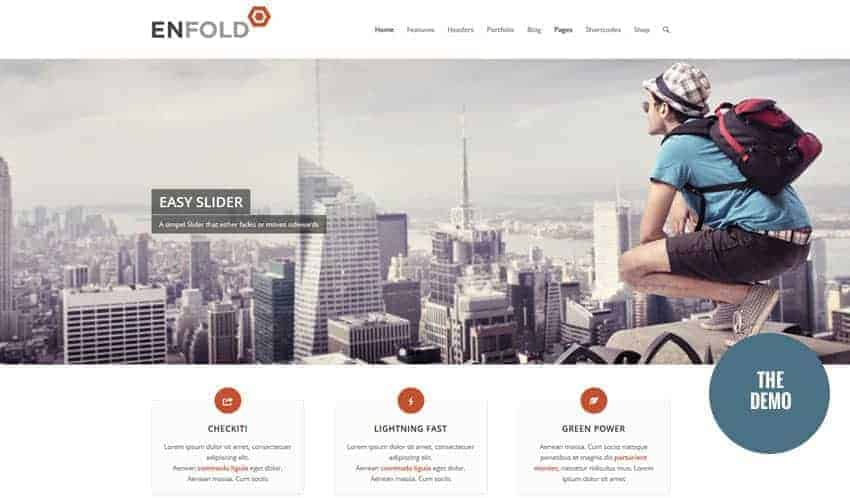 Demo view of Enfold WordPress theme