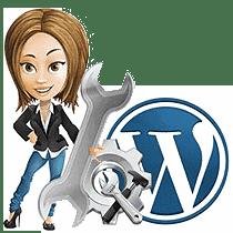 Wordpress opdaterings service fra BizDoktor