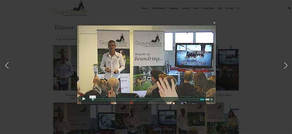 Videobibliotek - Medlemskab