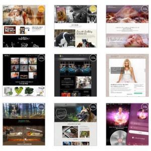 vores-hjemmesider-designs